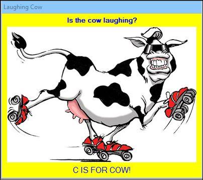 CowSplash